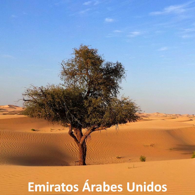 EAU, del golfo Pérsico al goldo de Omán